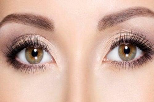 die Augenfarbe verrät sehr viel über einen Menschen