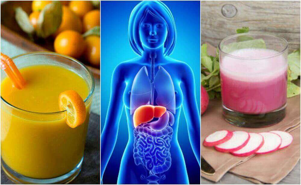 5 gesunden Getränke, die eine Fettleber verhindern