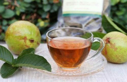 Guavenblätter-Tee für geschädigte Haare