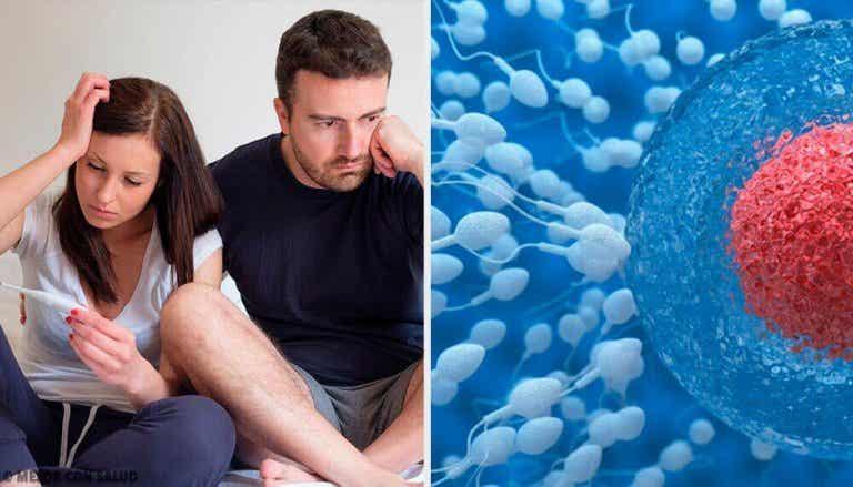 Tipps, um die männliche Fruchtbarkeit zu verbessern