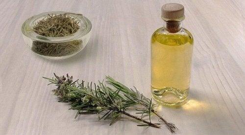 Ästherisches Rosmarinöl eignet sich gut für eine hausgemachte Pflegelotion