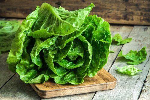 Salatblätter als glutenfreie Alternativen