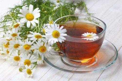Schmerzen in den Eierstöcken und Tee