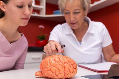 Wissenswertes über Multiple Sklerose