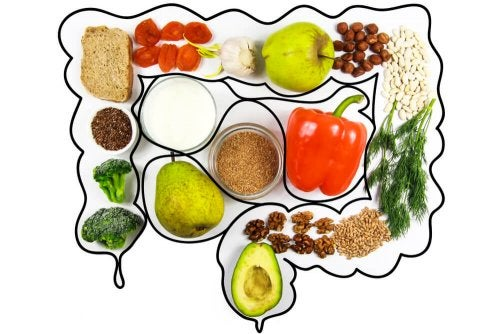 Darmgesunde Ernährung