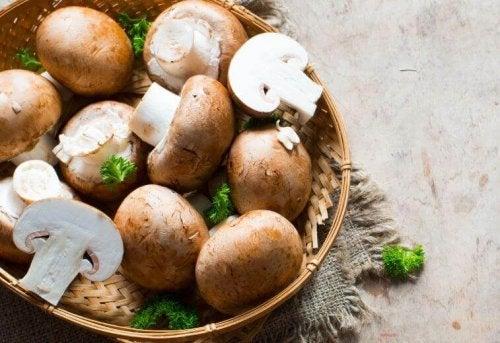 Gefüllte Pilze mit Käsefüllung
