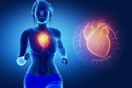 Gesundheitsvorteile von Fischöl für das Herz.
