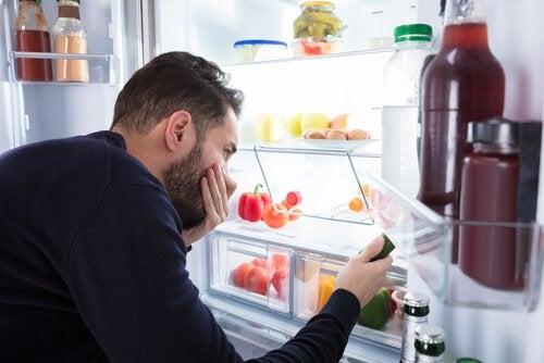 schlechte Gerüche im Kühlschrank
