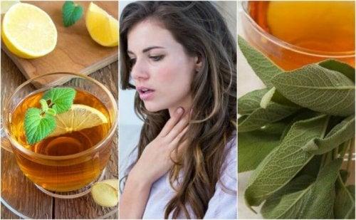 5 natürliche Heilmittel gegen verschleimte Bronchien