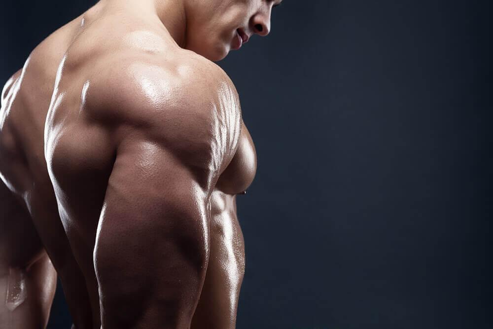 Ein Frühstück für die Muskeln