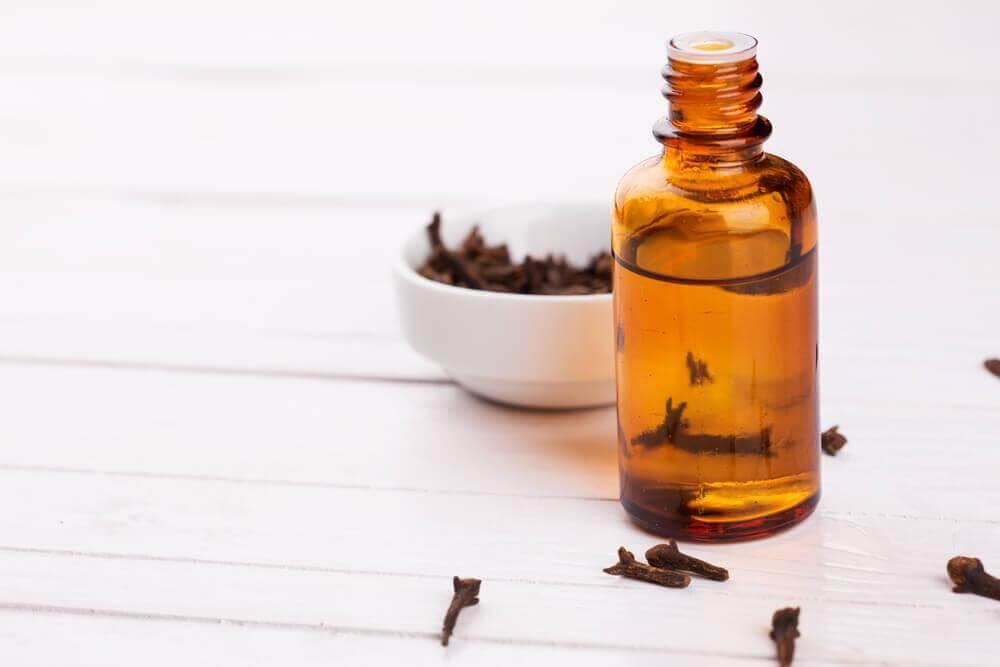 Nelken als natürliches Heilmittel für eine bessere Verdauung