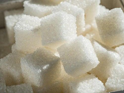 Raffinierter Zucker schädigt die Gehirnfunktion.