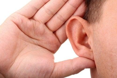 Beachte diese Ratschläge und nutze natürliche Heilmittel zur Vorbeugung von Hörverlust.