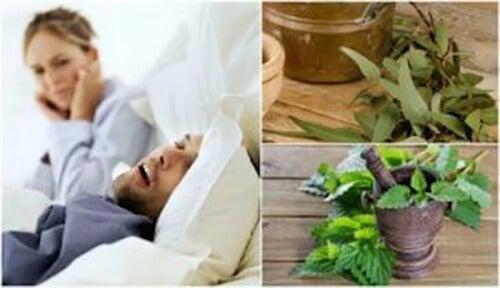 5 Natürliche Heilmittel gegen Schnarchen