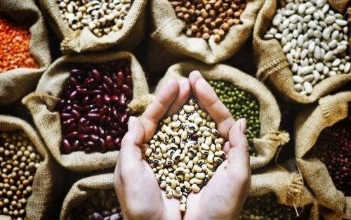 probiotische Lebensmittel: Hülsenfrüchte