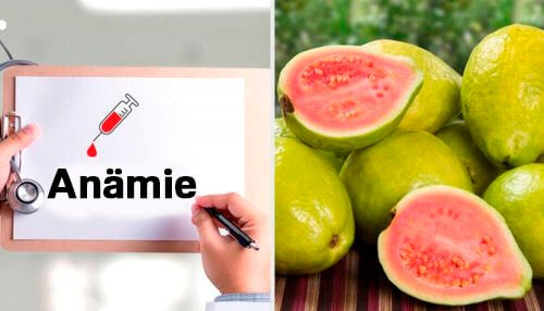 Entdecke die erstaunlichen Eigenschaften der Guave