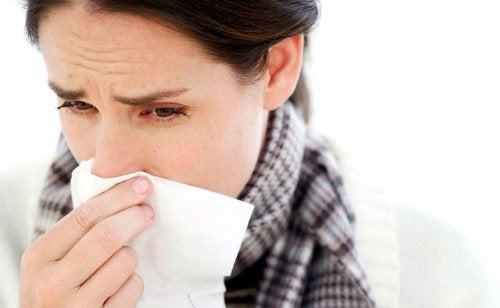 Lebensmittel können Grippe vorbeugen