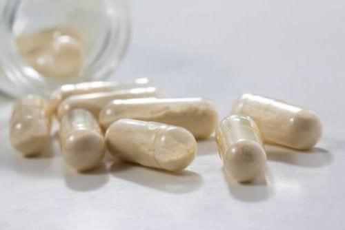 Wirkung von Probiotika ist nachgewiesen