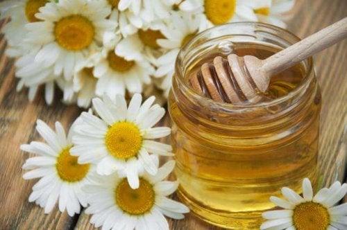 Kamille und Honig kann zur Aufbesserung deiner Hände beitragen