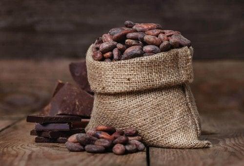 Du kannst deine Angst mindern, indem du Kakao in deine Ernährung aufnimmst