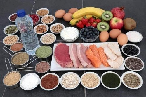 Eine Reihe an Lebensmitteln sind nebeneinander aufgelegt, unter anderem Fleisch oder Fisch mit Kreatin.