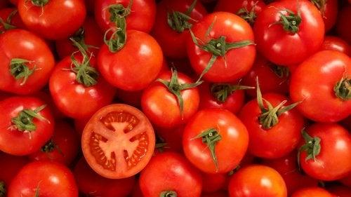 Tomaten für ein gesundes Zucchini-Tomaten-Gratin