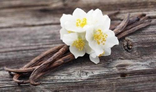 Vanille hilft zur Beseitigung von muffigem Geruch im Haushalt.