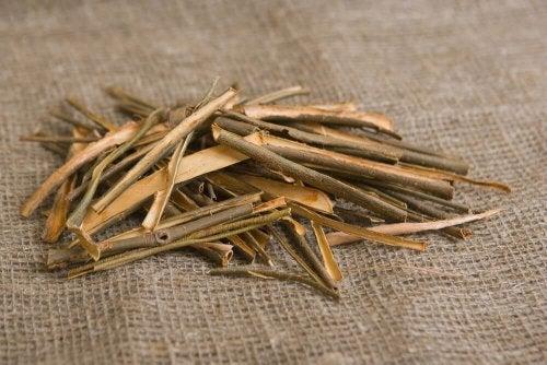 Bei der Behandlung steifer Hände ist Weidenrinde ein gutes Hausmittel