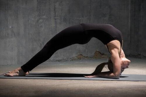4 Yoga-Übungen für mehr Energie