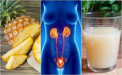 6 Heilmittel für Harnwegsinfektionen