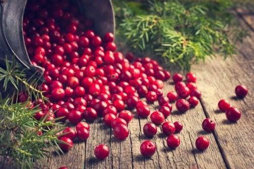 Cranberries im Eimer