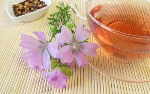 Tee und Blume