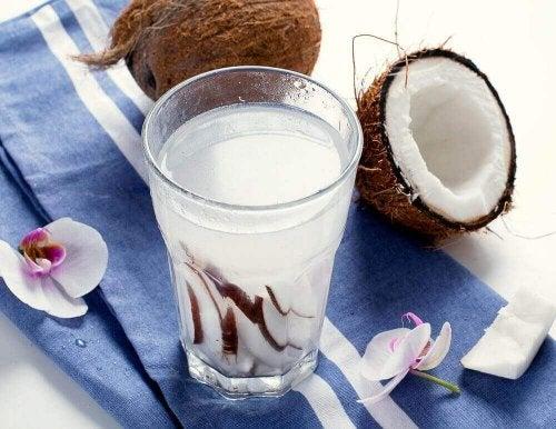 Ein Glas ist gefüllt mit Kokosnussmilch und im Hintergrund befinden sich zwei Kokosnüsse.