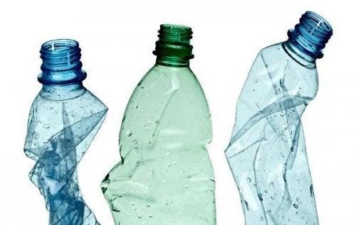 Plastikflaschen als Blumentöpfe recyceln
