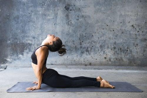 Die Kobra ist eine beliebte Yoga-Position
