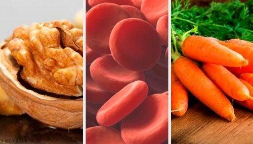 Tipps für mehr rote Blutkörperchen
