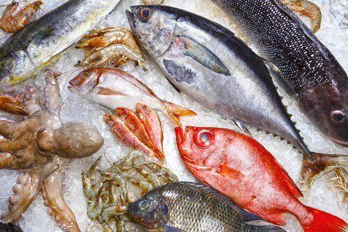 Süßwasserfisch kann deine Gesundheit gefährden