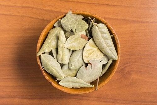 Getrocknete Blätter