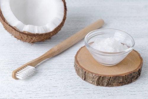 Kokosöl zur Vorbeugung von Zahninfektionen