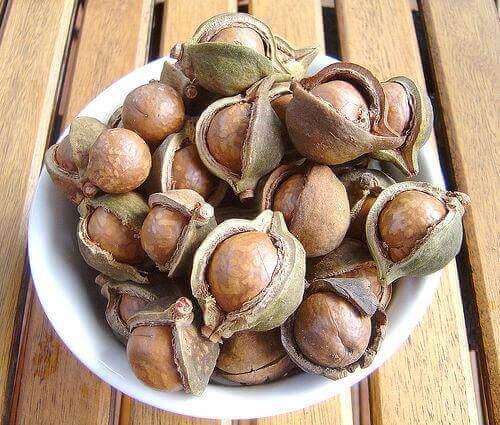 Eine Schüssel, die mit Macadamianüssen gefüllt ist. Das sind gesunde Nüsse.
