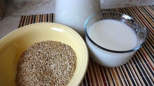 Milch aus Kanariengras und Zimt