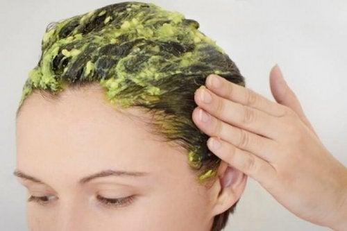 Haarmaske mit Avocado