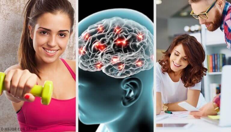 8 Tipps aus der Neurobiologie, die dich glücklich machen