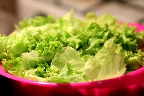 gesunder Salat in der Fettstoffwechsel-Diät