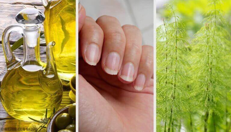 5 Hausmittel für natürlich starke Fingernägel