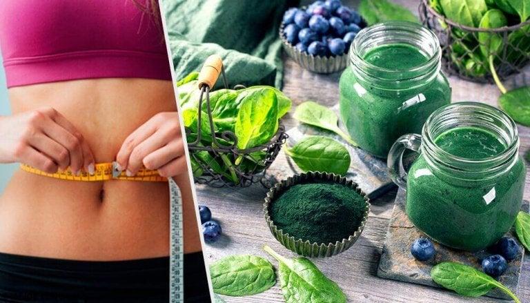 Wie dir Spirulina hilft, Gewicht zu verlieren