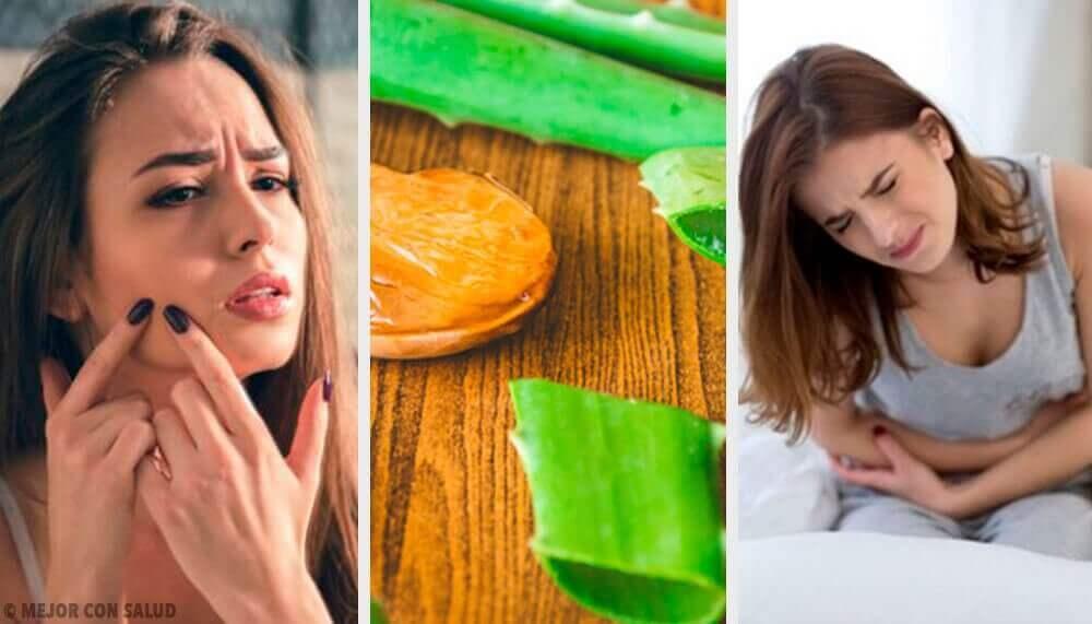 6 pflegende Eigenschaften der Aloe vera