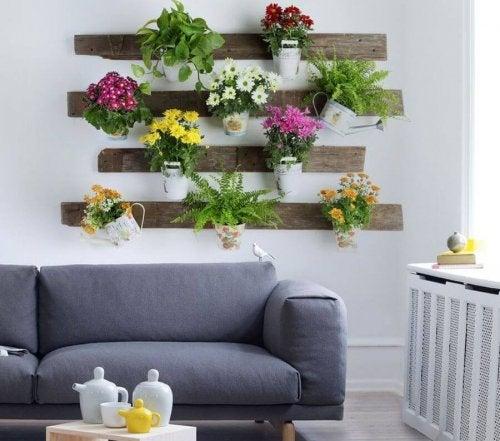Wie Zimmerpflanzen gesundheitsfördernd für dich sind