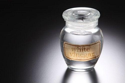 Gefäß mit weißem Essig