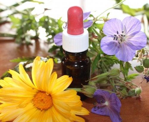 Naturmedizin für die Aromatherapie